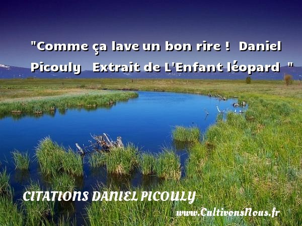 citations daniel picouly