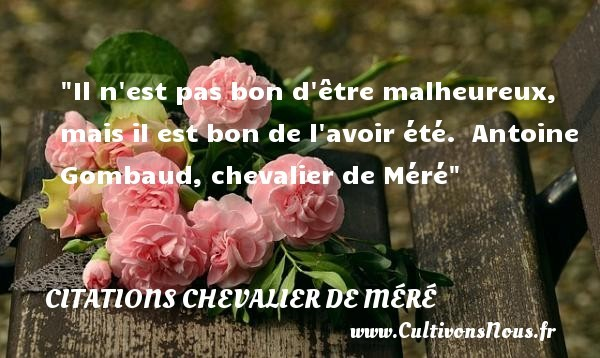 citations chevalier de méré