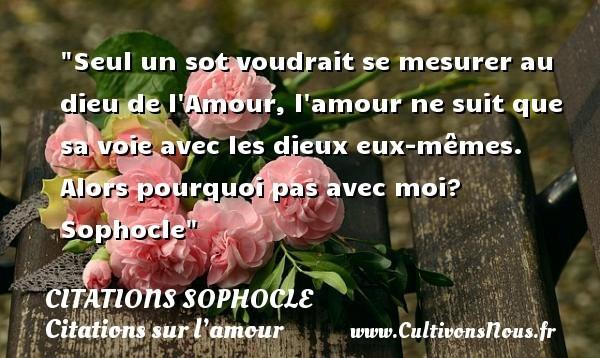 citations sophocle