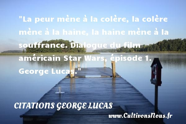 citations george lucas