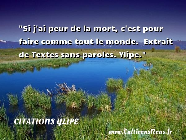 citations ylipe