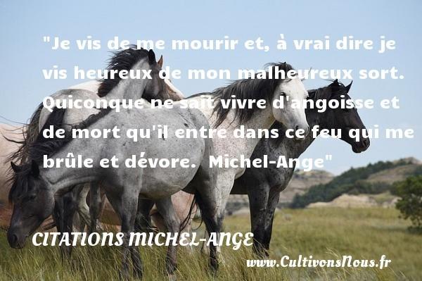 citations michel-ange