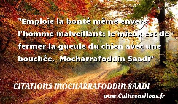 citations mocharrafoddin saadi
