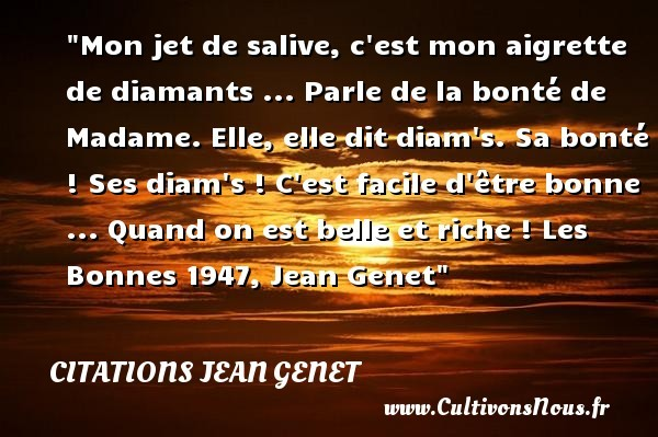 citations jean genet