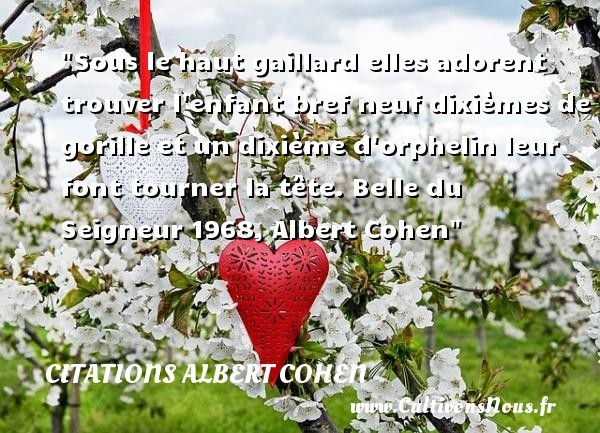 citations albert cohen