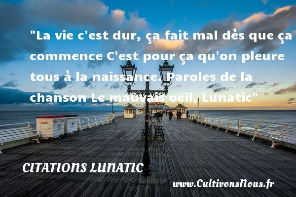 citations lunatic