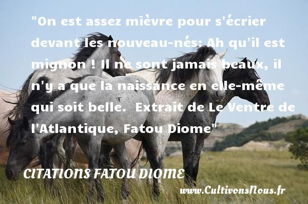 citations fatou diome