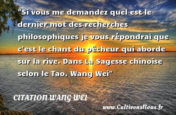 citation wang wei