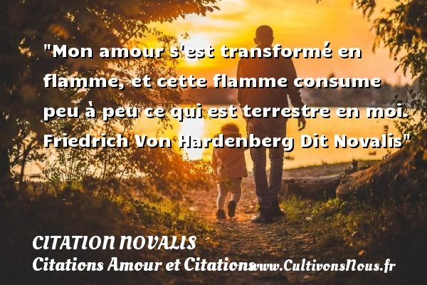 citation novalis