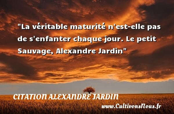citation alexandre jardin les citations d 39 alexandre
