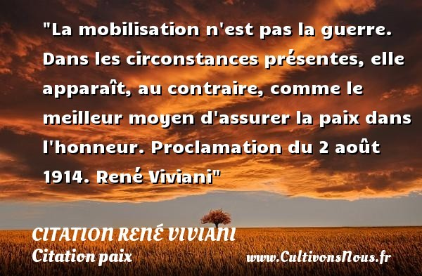 citation rené viviani