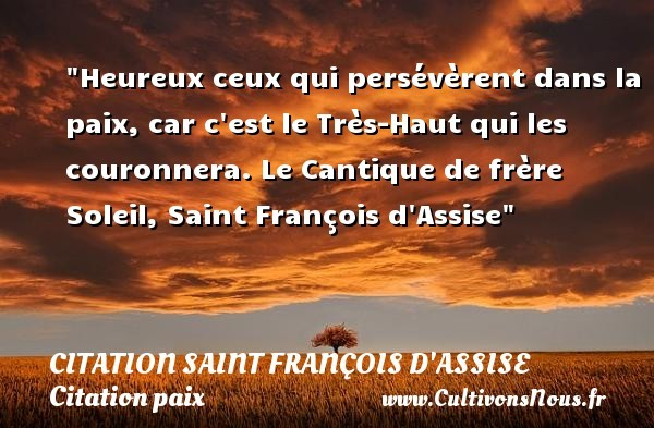 citation saint françois d'assise