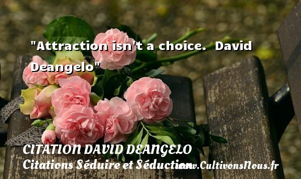 citation david deangelo