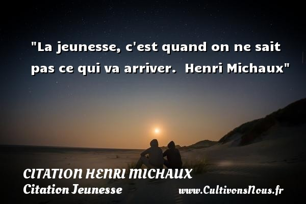 citation henri michaux