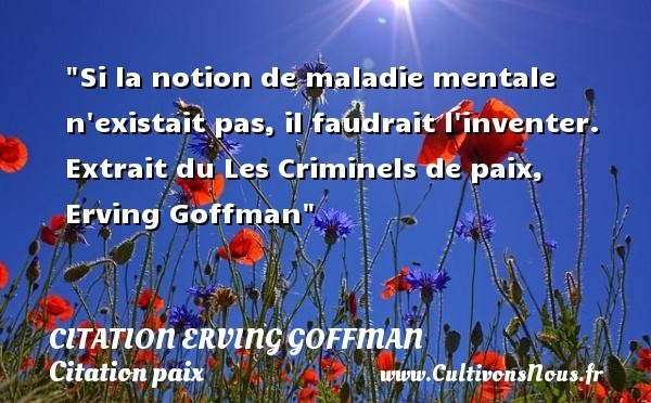 citation erving goffman