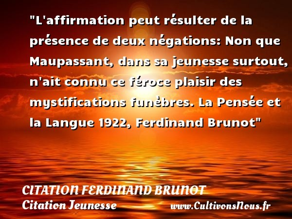 citation ferdinand brunot
