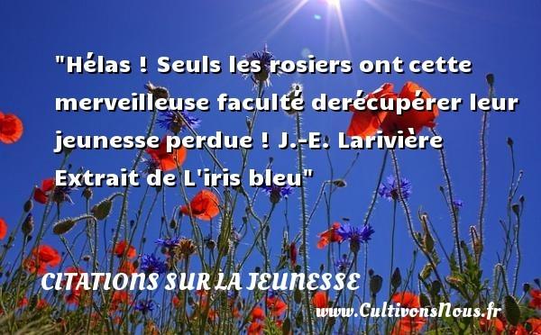 citation j.-e. larivière