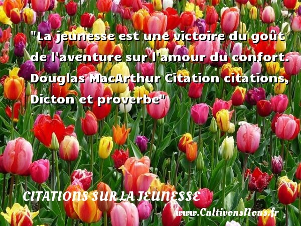 citation douglas macarthur