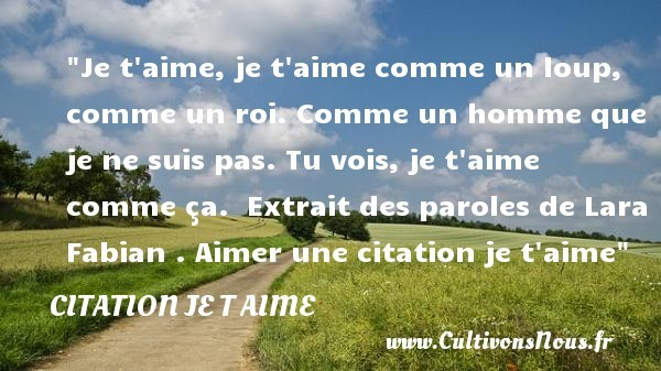 citation lara fabian