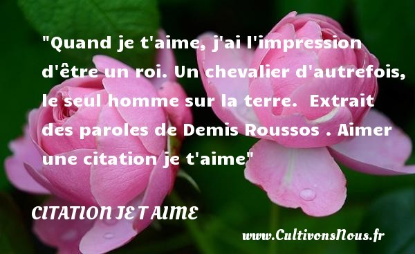 citation demis roussos