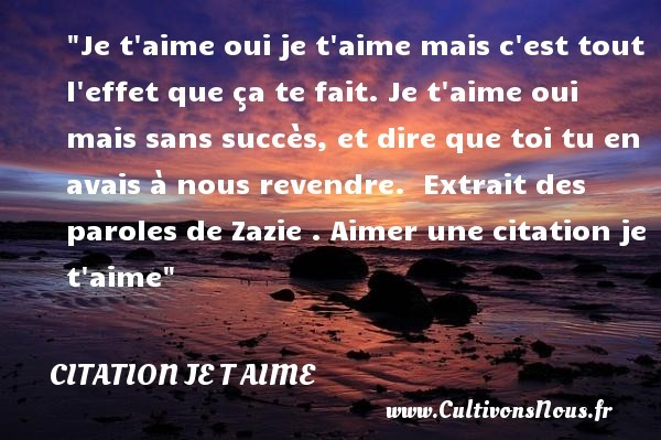 citation zazie