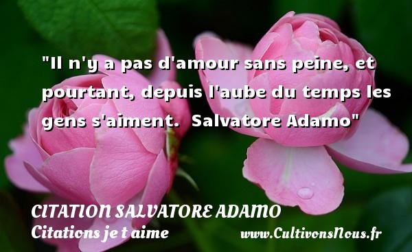 citation salvatore adamo