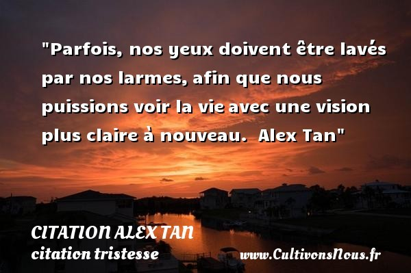 citation alex tan