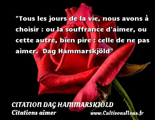 citation dag hammarskjöld