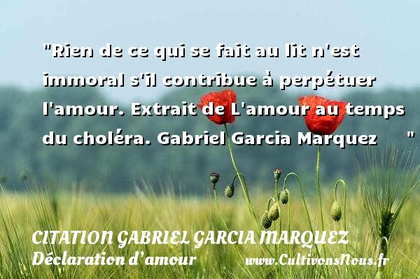 citation gabriel garcia marquez