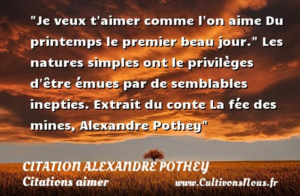 citation alexandre pothey
