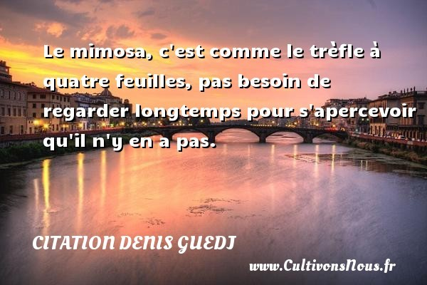 citation denis guedj