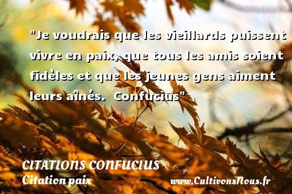 citations confucius