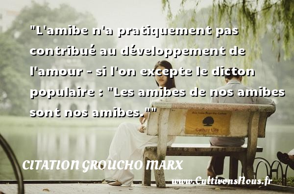 Citation Groucho Marx - L amibe n a pratiquement pas contribué au développement de l amour - si l on excepte le dicton populaire :  Les amibes de nos amibes sont nos amibes.  Une citation de Groucho Marx CITATION GROUCHO MARX