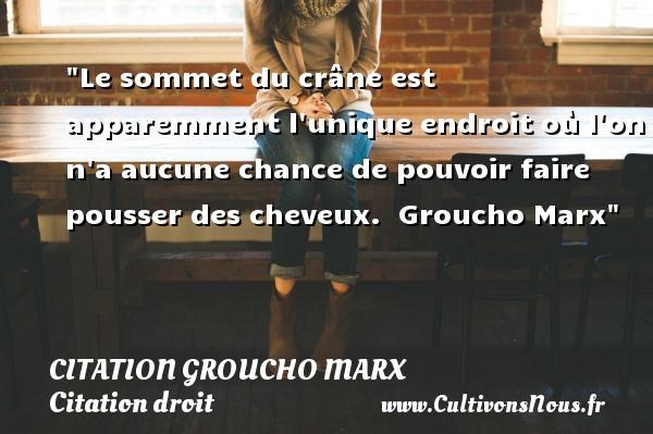 Citation Groucho Marx - Citation droit - Le sommet du crâne est apparemment l unique endroit où l on n a aucune chance de pouvoir faire pousser des cheveux.   Groucho Marx   Une citation sur le droit CITATION GROUCHO MARX