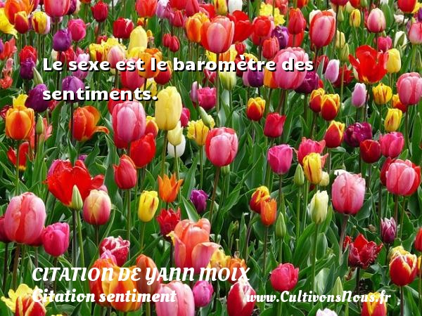 Citation de Yann Moix - Citation sentiment - Le sexe est le baromètre des sentiments. Une citation d  Yann Moix CITATION DE YANN MOIX