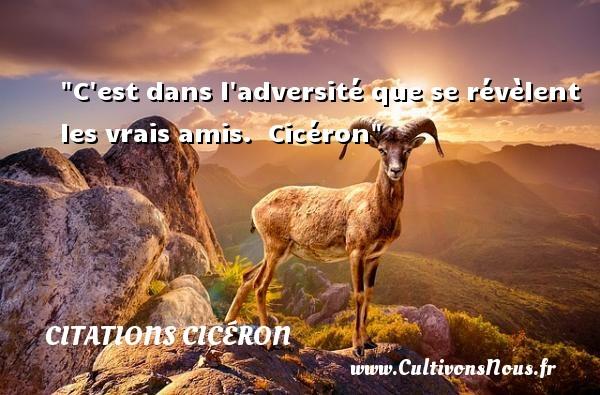 Citations Cicéron - Citation Amitié - C est dans l adversité que se révèlent les vrais amis.   Cicéron   Une citation sur l amitié    CITATIONS CICÉRON