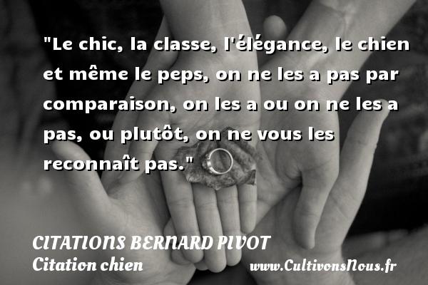 Citations Bernard Pivot - Citation chien - Le chic, la classe, l élégance, le chien et même le peps, on ne les a pas par comparaison, on les a ou on ne les a pas, ou plutôt, on ne vous les reconnaît pas.   Bernard Pivot   Une citation sur le chien CITATIONS BERNARD PIVOT