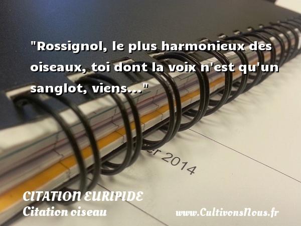 Citation Euripide - Citation oiseau - Rossignol, le plus harmonieux des oiseaux, toi dont la voix n est qu un sanglot, viens... Une citation de Euripide CITATION EURIPIDE