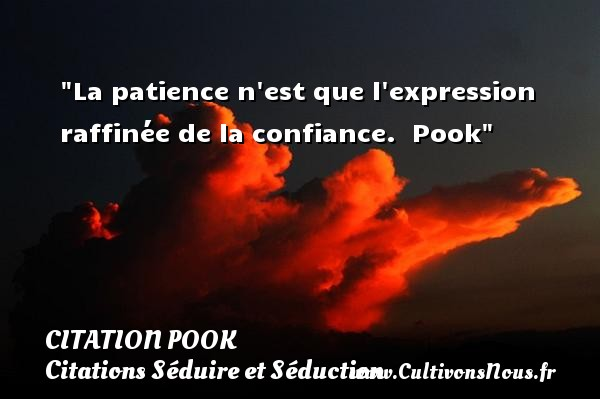 Citation Pook - Citations Séduire et Séduction - La patience n est que l expression raffinée de la confiance.   Pook   Une citation séduire et séduction    CITATION POOK
