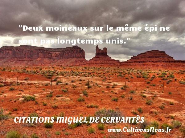 Citations Miguel de Cervantès - Deux moineaux sur le même épi ne sont pas longtemps unis. Une citation de Miguel de Cervantès CITATIONS MIGUEL DE CERVANTÈS