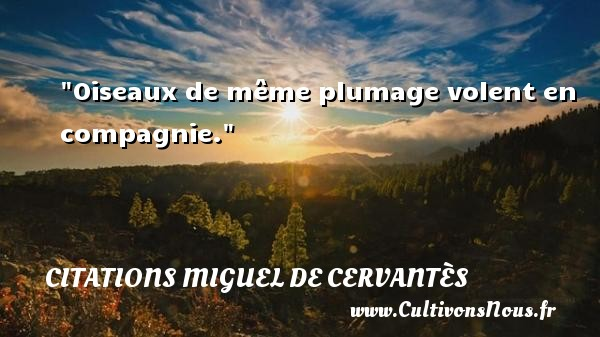 Citations Miguel de Cervantès - Citation age - Oiseaux de même plumage volent en compagnie. Une citation de Miguel de Cervantès CITATIONS MIGUEL DE CERVANTÈS