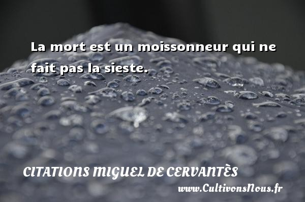 Citations Miguel de Cervantès - La mort est un moissonneur qui ne fait pas la sieste. Une citation de Miguel de Cervantès CITATIONS MIGUEL DE CERVANTÈS