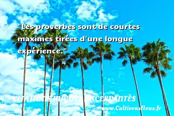 Citations Miguel de Cervantès - Les proverbes sont de courtes maximes tirées d une longue expérience. Une citation de Miguel de Cervantès CITATIONS MIGUEL DE CERVANTÈS
