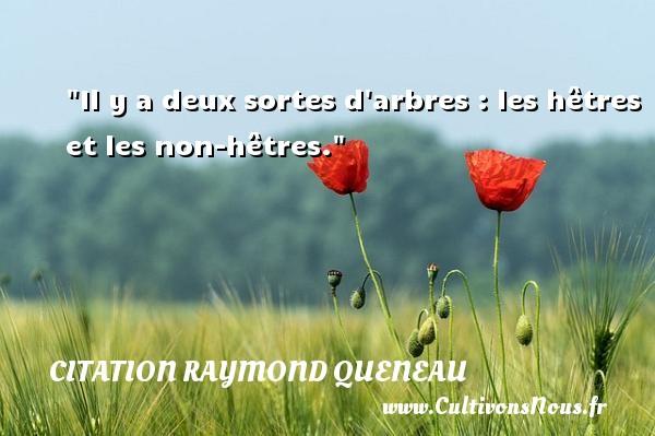 Il y a deux sortes d arbres : les hêtres et les non-hêtres. Une citation de Raymond Queneau CITATION RAYMOND QUENEAU - Citation arbre