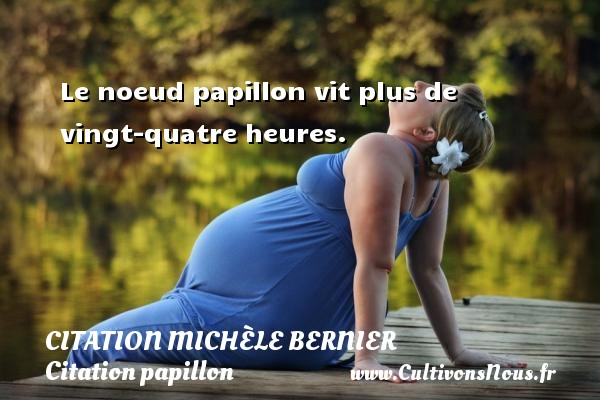 Citation Michèle Bernier - Citation papillon - Le noeud papillon vit plus de vingt-quatre heures. Une citation de Michèle Bernier CITATION MICHÈLE BERNIER