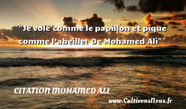 Citation Mohamed Ali - Citation papillon - Je vole comme le papillon et pique comme l'abeille!  De Mohamed Ali CITATION MOHAMED ALI