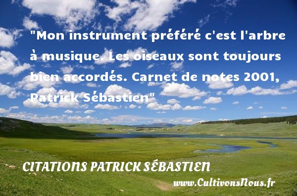 Mon instrument préféré c est l arbre à musique. Les oiseaux sont toujours bien accordés.  Carnet de notes 2001, Patrick Sébastien   Une citation sur la musique     CITATIONS PATRICK SÉBASTIEN - Citations Patrick Sébastien - Citation musique