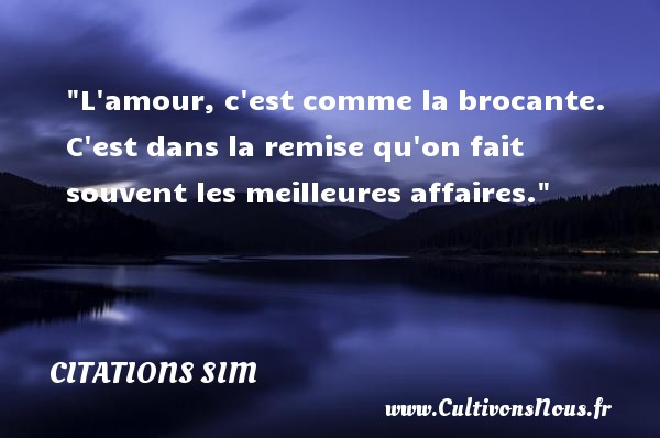 citation sim les citations de sim. Black Bedroom Furniture Sets. Home Design Ideas