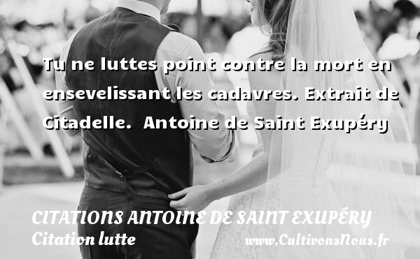 Citations Antoine de Saint Exupéry - Citation lutte - Tu ne luttes point contre la mort en ensevelissant les cadavres.  Extrait de Citadelle.   Antoine de Saint Exupéry     CITATIONS ANTOINE DE SAINT EXUPÉRY