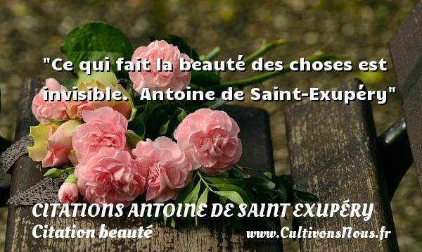 Ce qui fait la beauté des choses est invisible.   Antoine de Saint-Exupéry   Une citation sur la beauté   CITATIONS ANTOINE DE SAINT EXUPÉRY - Citations Antoine de Saint Exupéry - Citation beauté